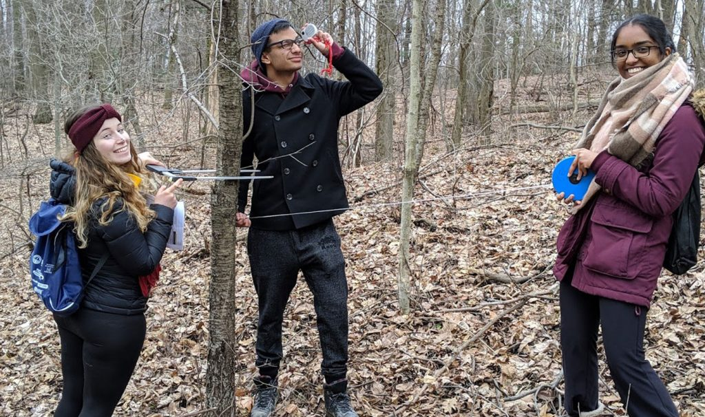 Artsci students in the Dundas Valley